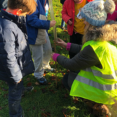 FACE Tree Planting at St Stephens Primary